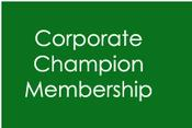 206/17 WDAB Membership - Demon Corporate Champion
